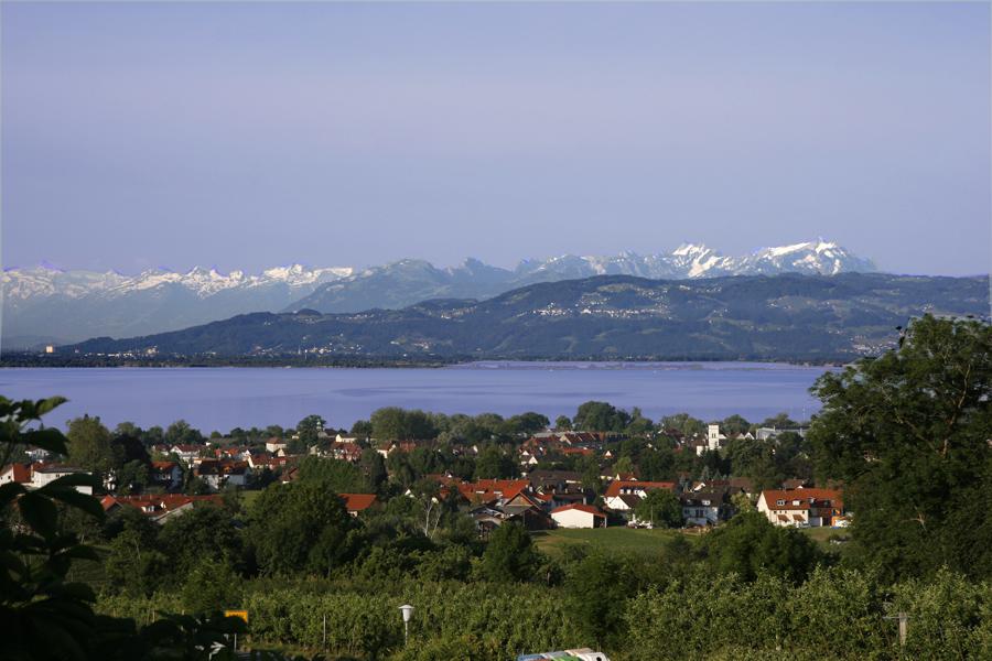 https://www.montfort-schloessle.de/wp-content/uploads/2021/01/Montfort-Schloessle-panorama.jpg